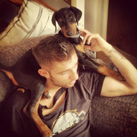 New Dobie Puppy Help!-fotoflexer_photo4.jpg