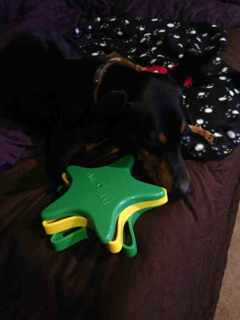2012 SS/elves PHOTOS & comments reveal-imageuploadedbypg-free1356469606.817933.jpg