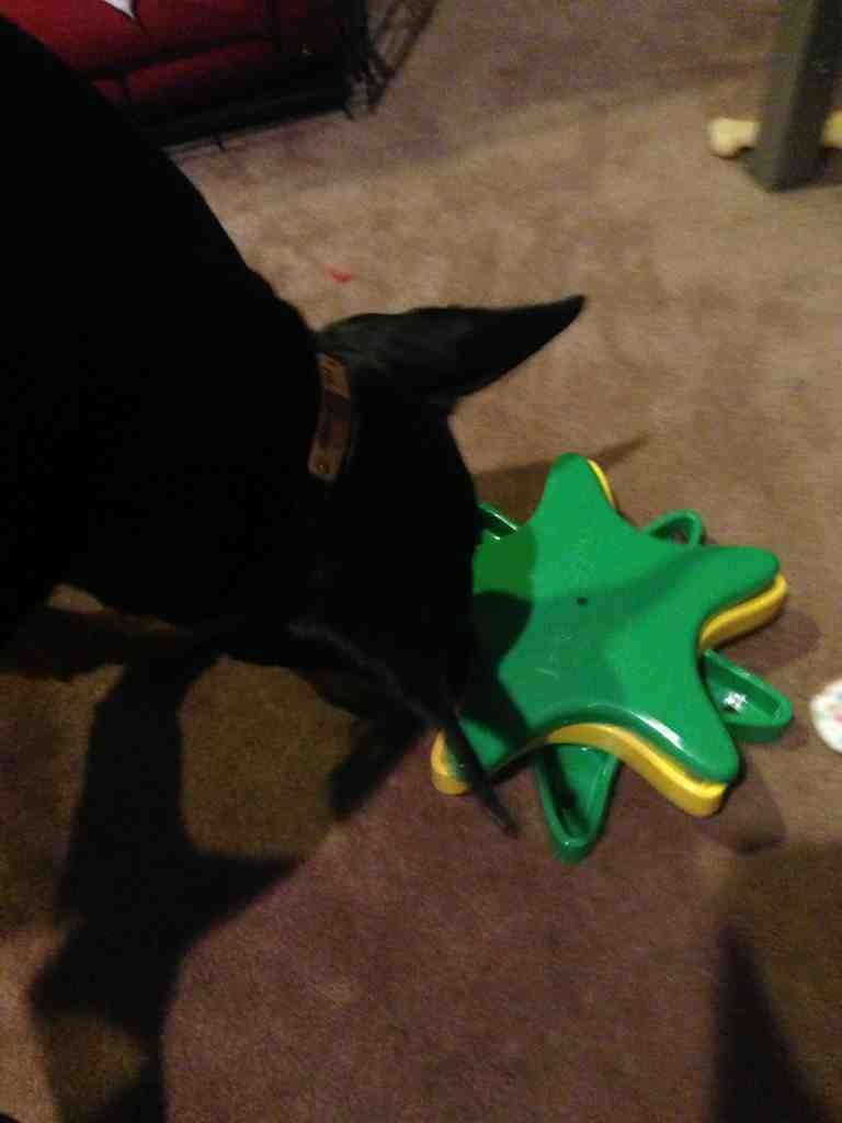 2012 SS/elves PHOTOS & comments reveal-imageuploadedbypg-free1356469651.634308.jpg