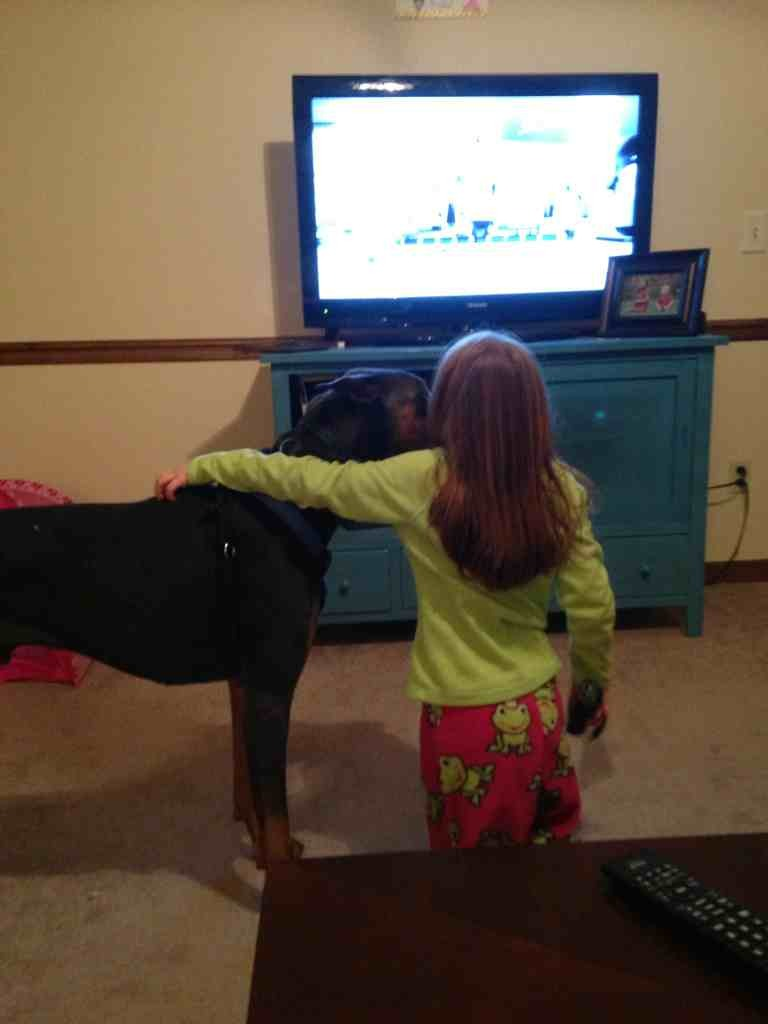 Who knew Dobies love to Wii bowl?-imageuploadedbypg-free1357539654.060353.jpg