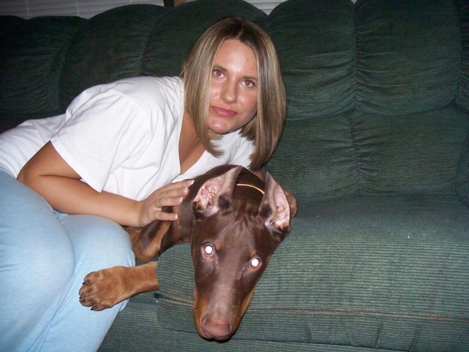 Displaying 20> Images For - Doberman Ear Cropping Styles...