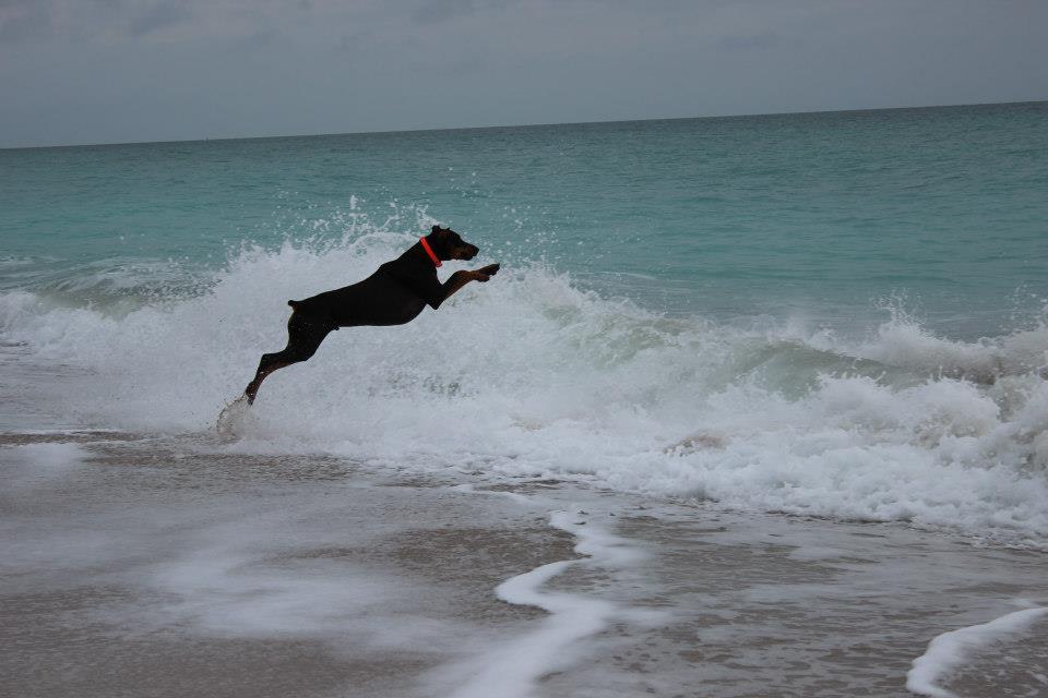 Beach Pictures!!-rr.jpg