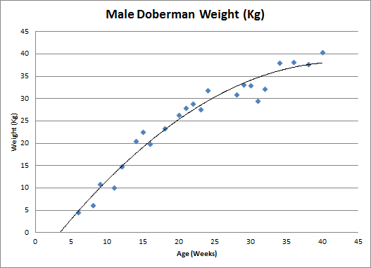 Doberman 4 months old weight