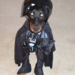 Zeus As Darth Vader
