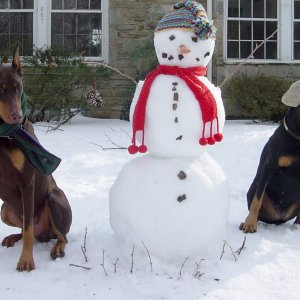 Zelda, Charlie Brown and Snowman