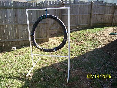 Agility equipment I have made