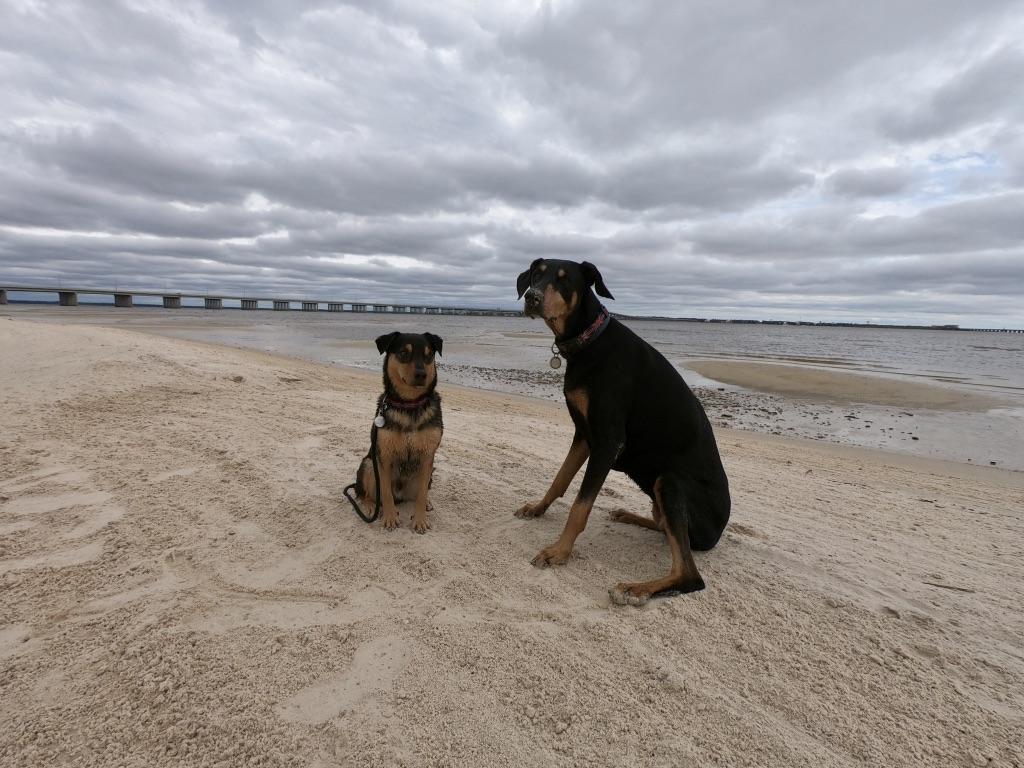 Beach Today