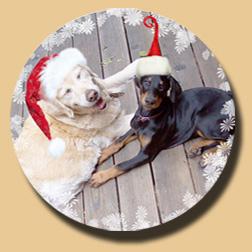 Bella + Shelley Christmas 2008