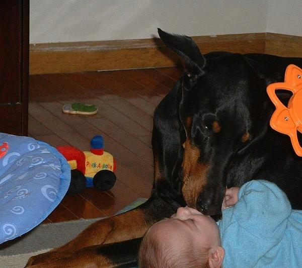 Cole luvs babies