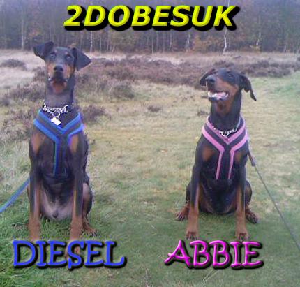 Diesel and Abbie