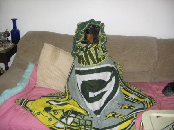 Dobe Green Bay Packers Fan