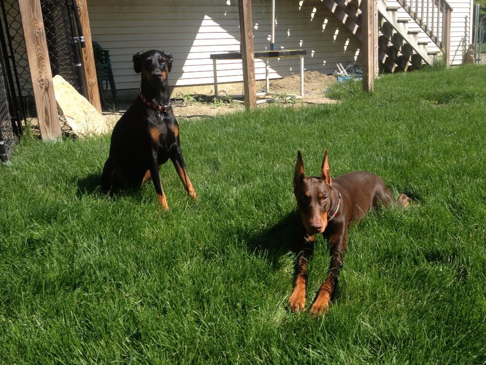 Jossie And Jessie