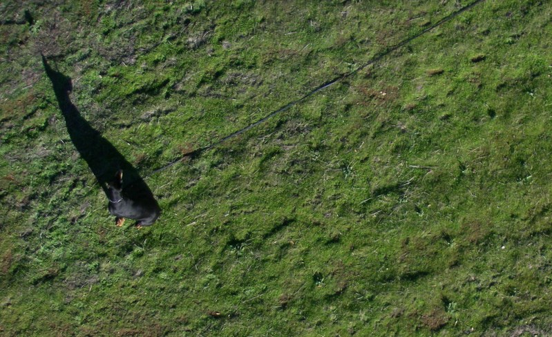 Mensa, A Kite's-eye View - 1/0