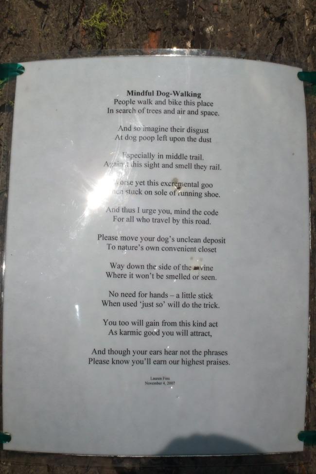 Mindful Dog Walking