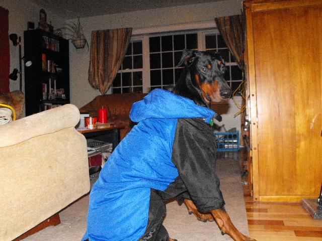 Modeling My Snowsuit :)