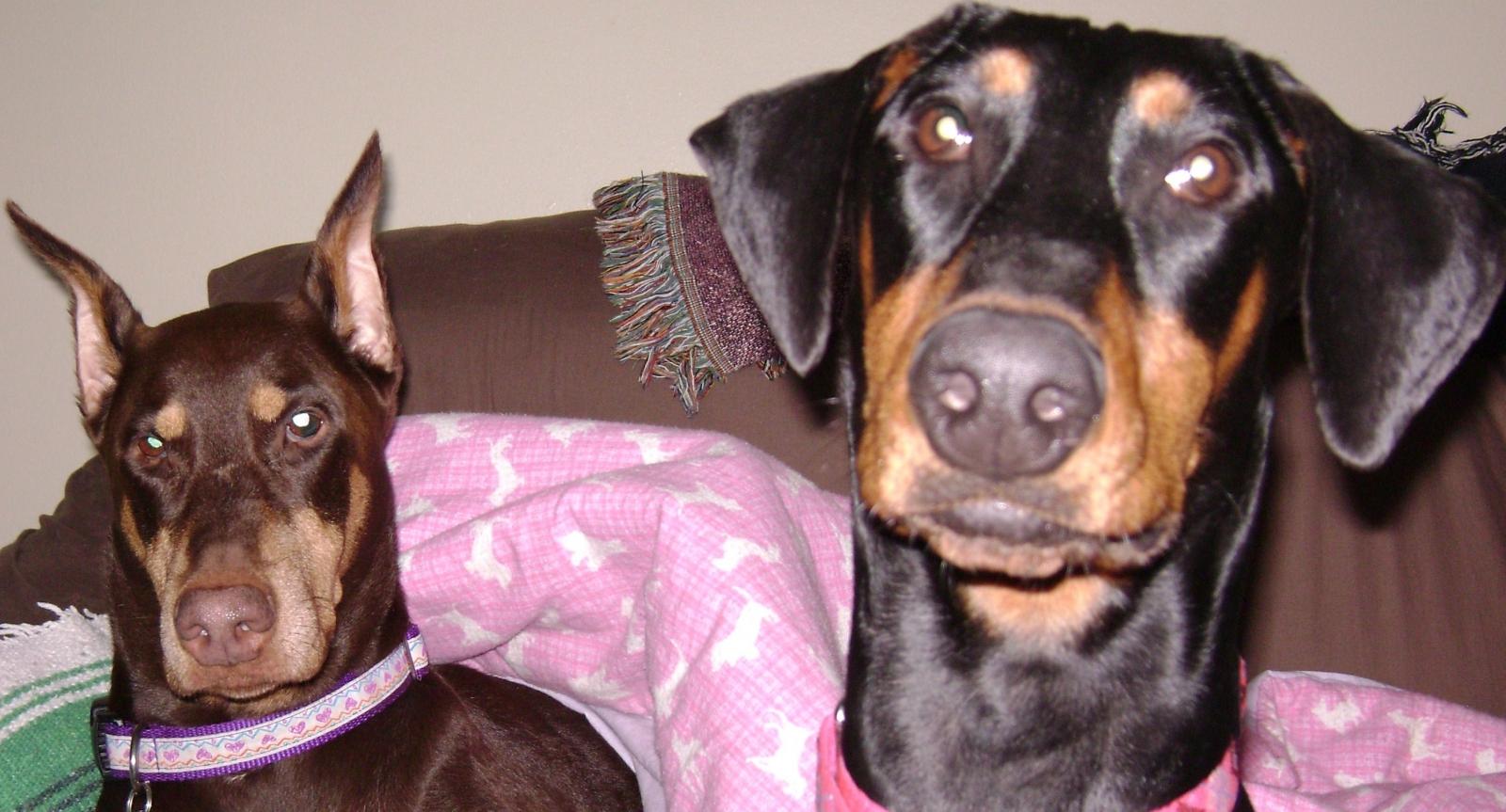 Olivia & Sara