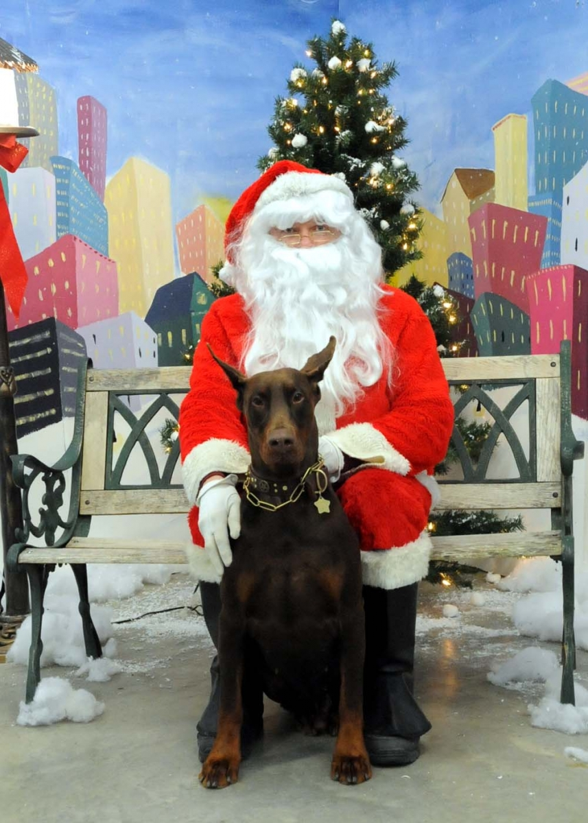 Petey With Santa 2008