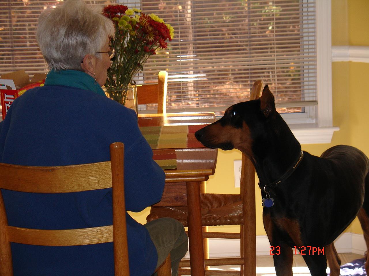 Rex and granny