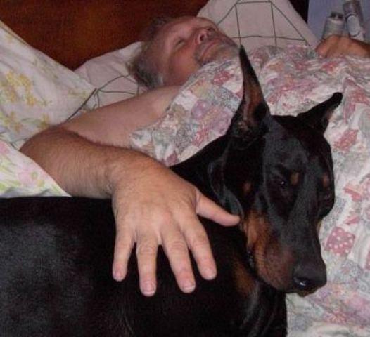 Sleep Comfortably, Dear Alex
