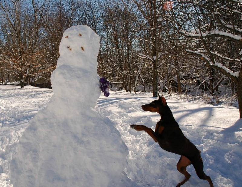 Snowman Attack