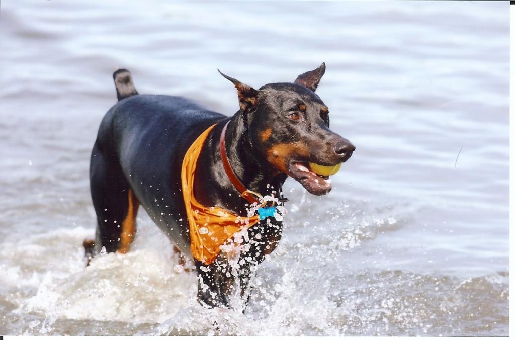 Spirit at beach