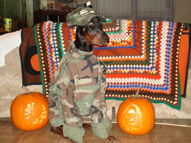 Support Our Troops Dobe!