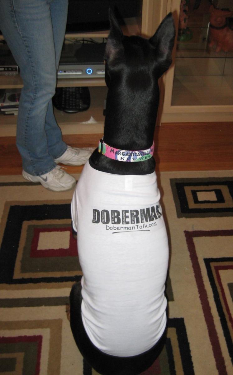 Takira Dog Shirt 1