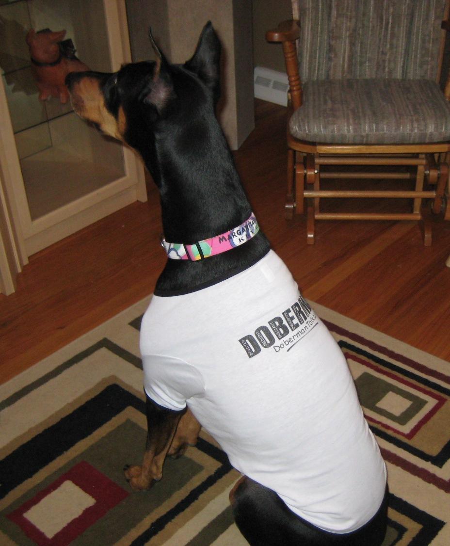 Takira Dog Shirt 2